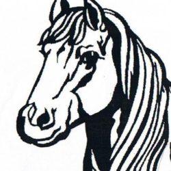 Hestefoder.