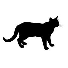 Katte.